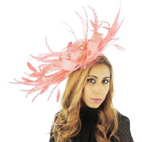 Paparazzi Feather  Fascinator - Hats By Cressida