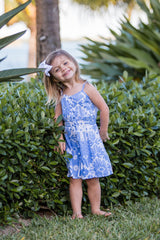 Lala Dress / Periwinkle Ikat