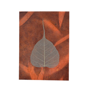 Bodhi Leaf Shadow Card