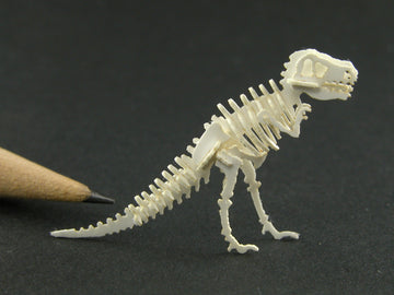 Tyrannosaurus rex skeleton model, old style pose.  Can be made to order.