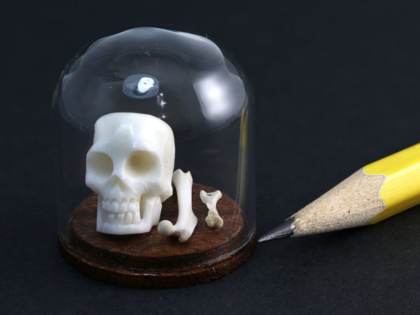 Tiny skull & bones under miniature glass dome