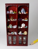 1:24 scale natural history collector's cabinet