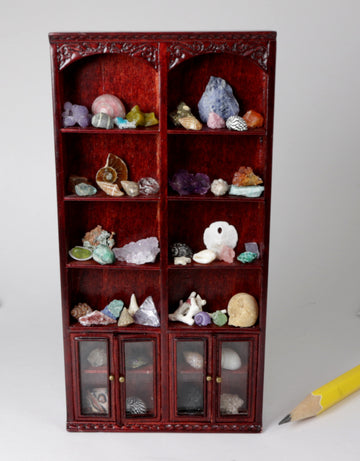 1:24 natural history collection cabinet - crystals, minerals, fossils, shells