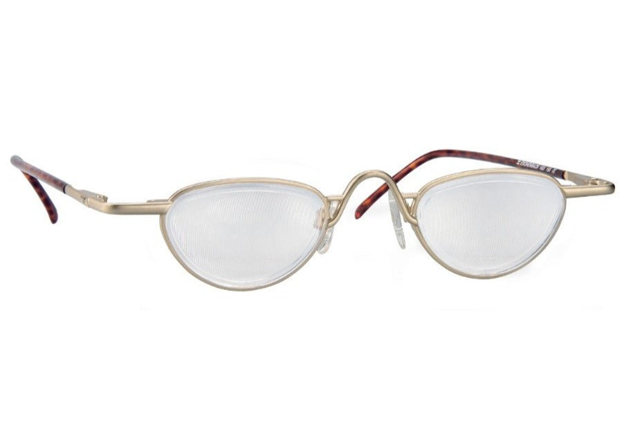 Oval spectacles with gold front and tortoiseshell temples