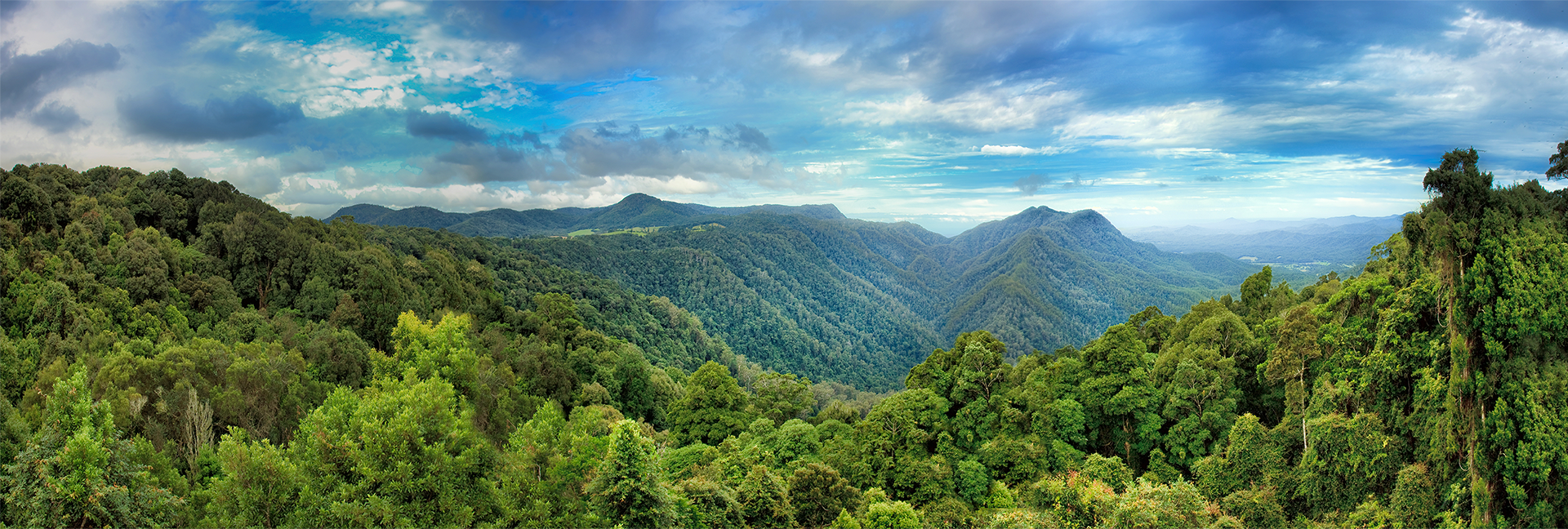 green forest mountain scenery with blue sky