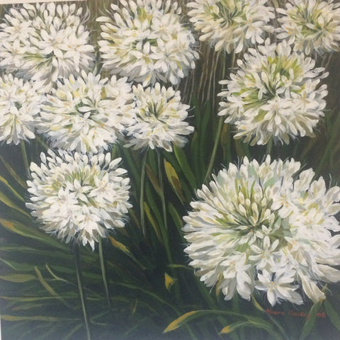 White Agapanthus   Elizabeth Moore Golding original artwork