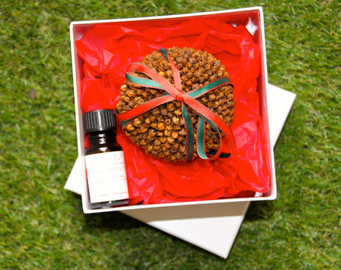 Christmas Spice - Clove Bud Pomander, gift boxed