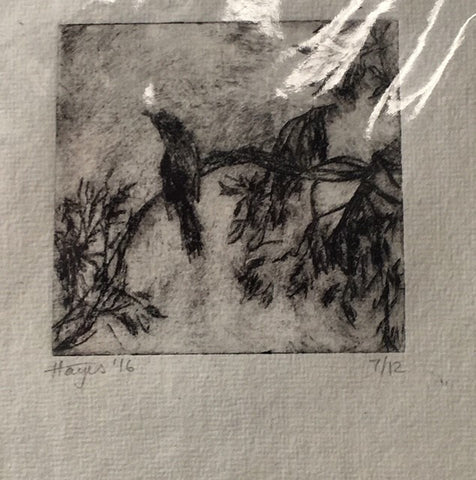 Currawongs, Chum Creek  Acetate etching 7/12, Janet Hayes