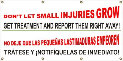A503 Don't Let Small Injuries Grow (Spanish)