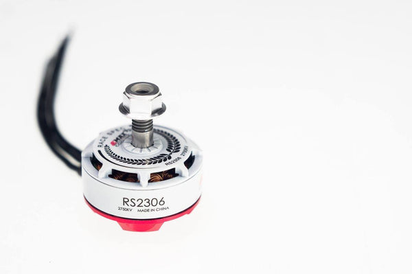 EMAX RS2306 Racing Series Brushless Motor (white)