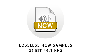 The samples in this library are losslessly compressed 24 bit 48 kHz NCW files. They can only be played by Kontakt or Kontakt Player.