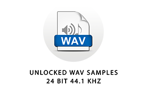 The samples in this library are standard 24 bit 44.1 kHz wave files. They can be used in any audio software or hardware that supports common wav files.