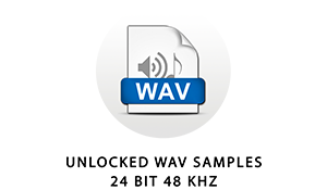 The samples in this library are standard 24 bit 48 kHz wave files. They can be used in any audio software or hardware that supports common wav files.