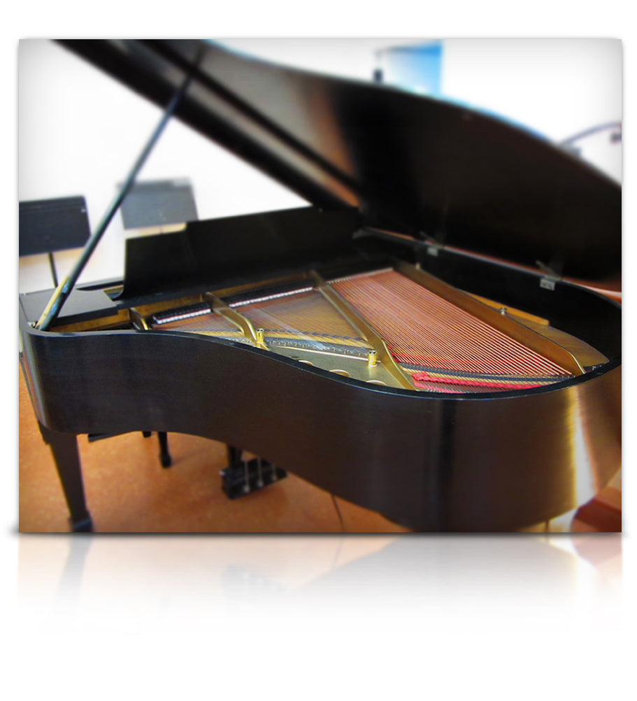 Montclarion Hall Grand Piano -  - virtual instrument sample library for Kontakt by Soundiron