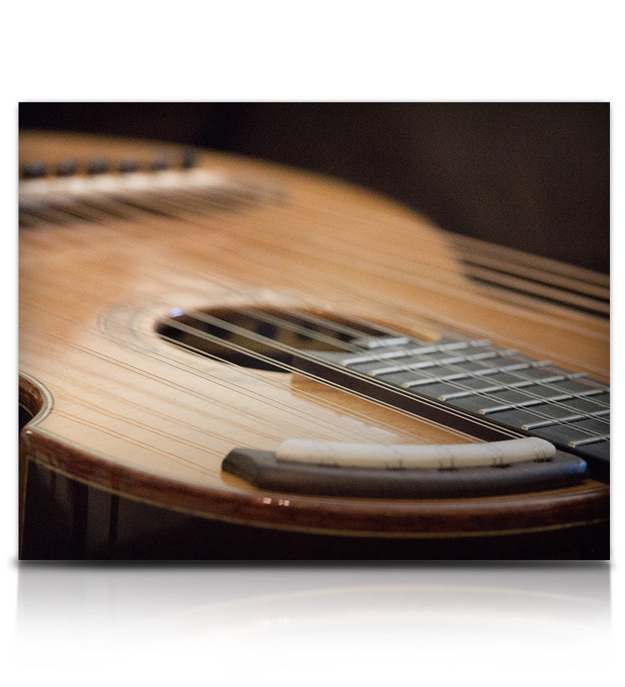 Brad Hoyt's Harp Guitar - Strings - virtual instrument sample library for Kontakt by Soundiron