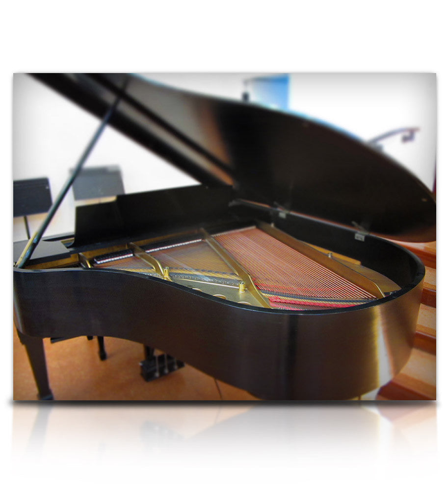 Struck Grand Piano - Pianos and Organs - virtual instrument sample library by Soundiron