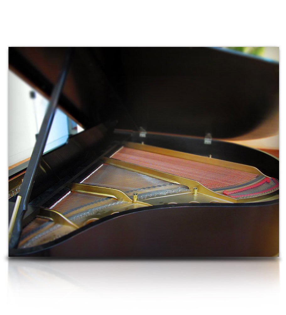 Struck Grand Piano - Pianos and Organs - virtual instrument sample library for Kontakt by Soundiron