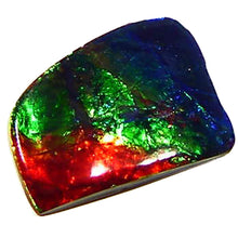 Load image into Gallery viewer, Large, multicolor Ammolite cabochon