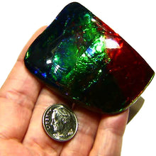Load image into Gallery viewer, BIG Ammolite cabochon from Canada