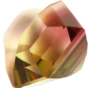 Faceted bi color tourmaline