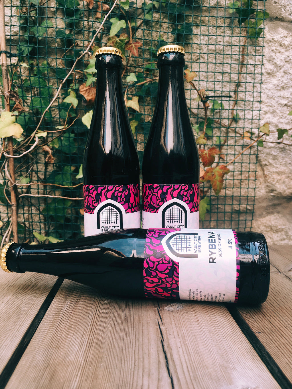 Vault City Rybena Session Sour (Fruited Sour) - Armazém da Cerveja