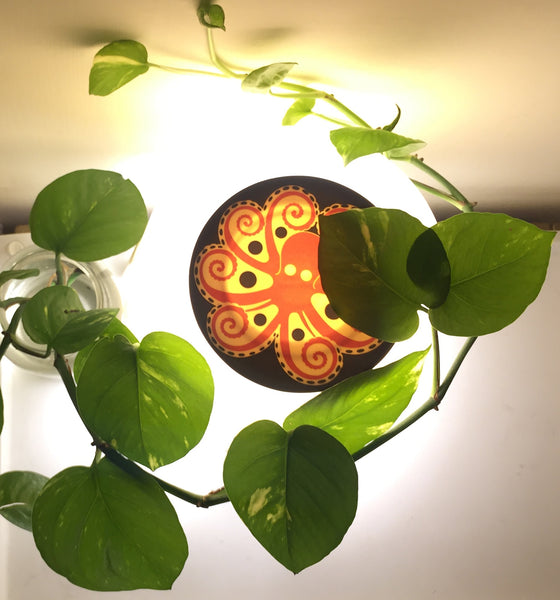 This little light of mine (might just kill my plants)