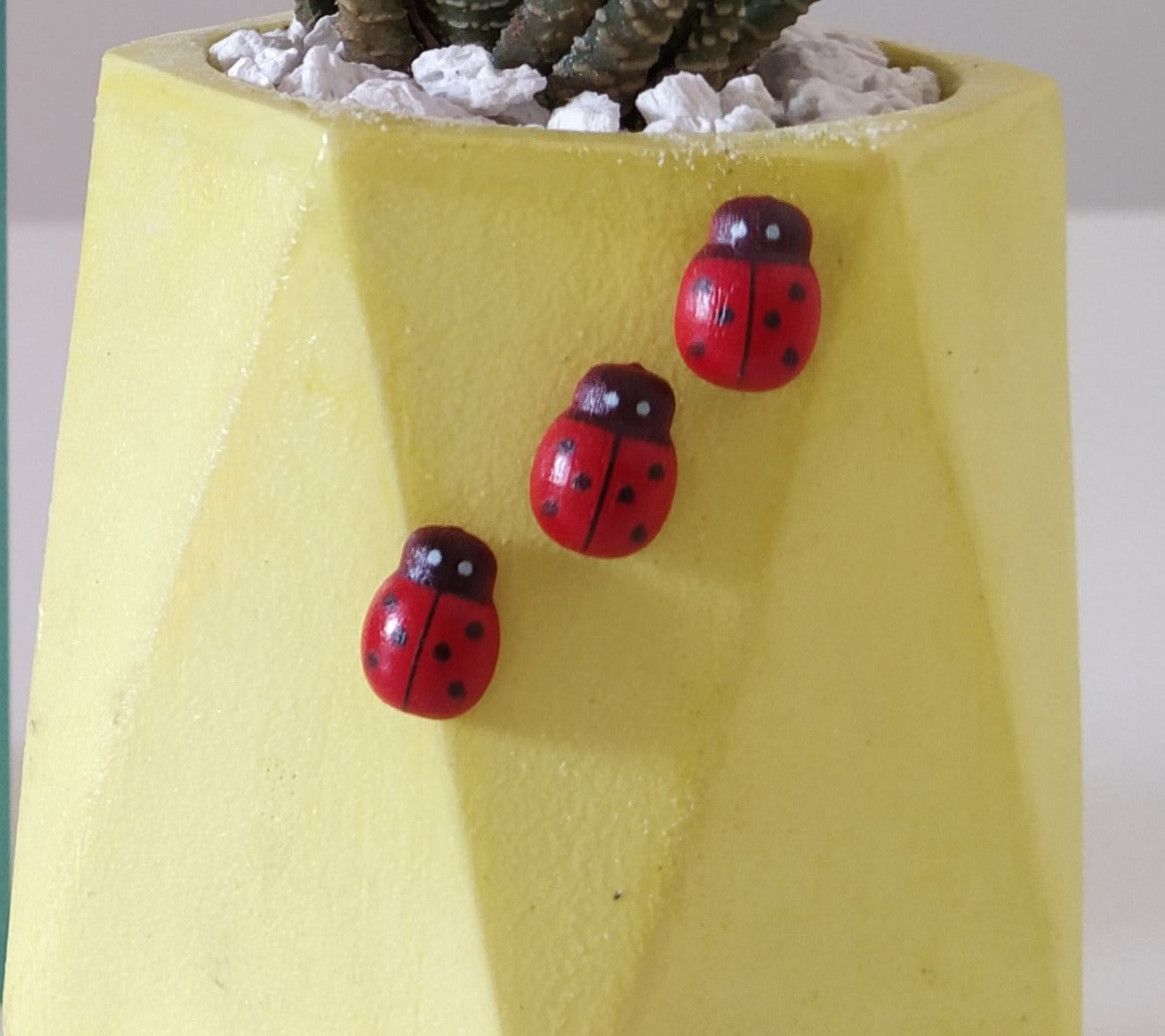 Lady bugs (pack of 3)