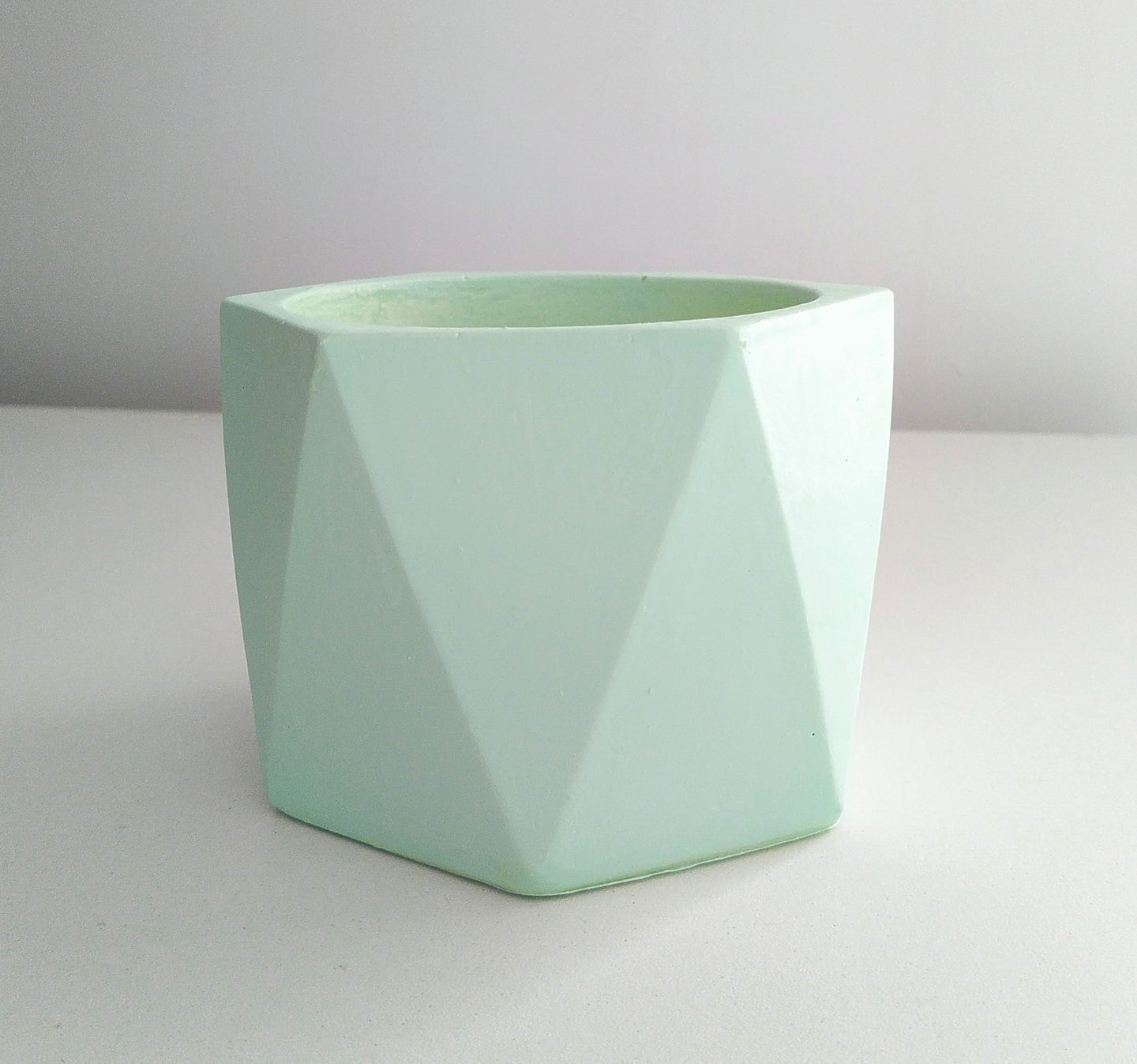 'Mega Angles' (mint) - PLANTER ONLY