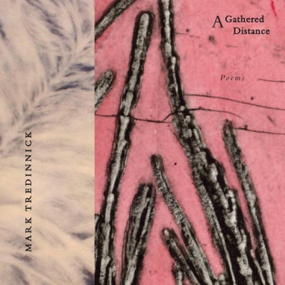 A Gathered Distance: Poems