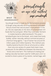 Organic Sourdough Starter + Simple Sourdough Guide