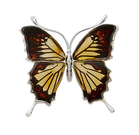 Amber Monarch Butterfly Pendant / Earrings