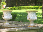 A Pair Of 19thC Cast Iron Garden Urns