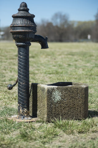 Cast Iron Pump and Stone Trough