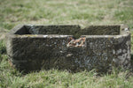 English  Stone Trough