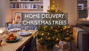 real Christmas trees delivered to your door