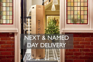 next day or named day delivery real Christmas trees