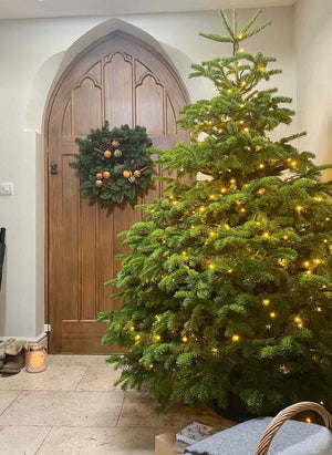 7.5FT Christmas Tree Starter Kit
