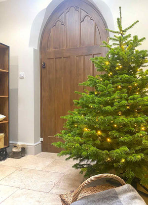 Croft & Cole 6FT Real Christmas Tree Starter Kit - Delivered