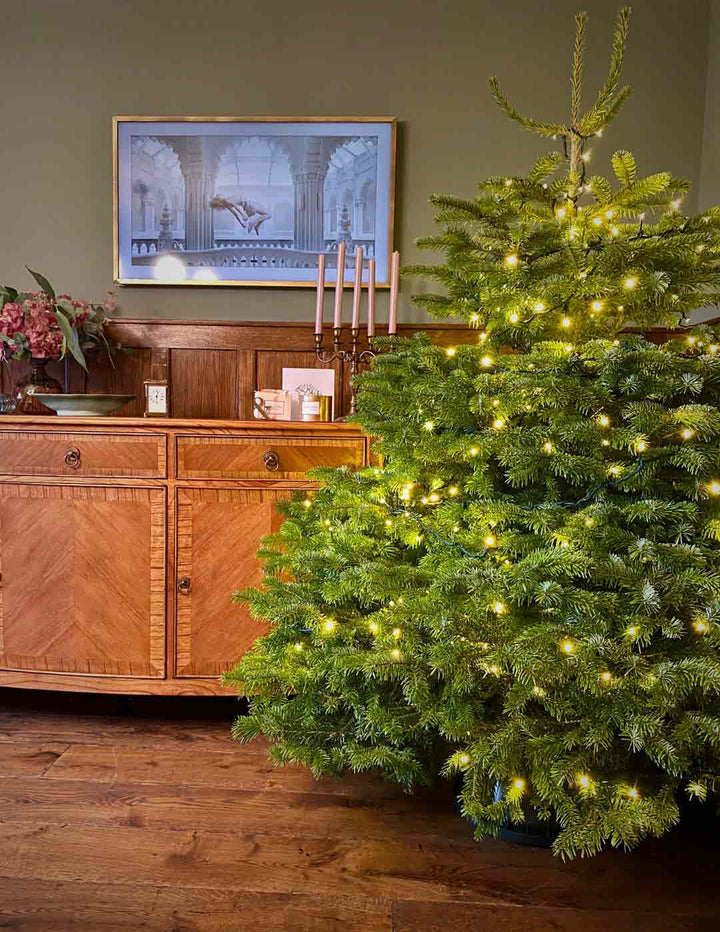 6.5FT Christmas Tree Starter Kit