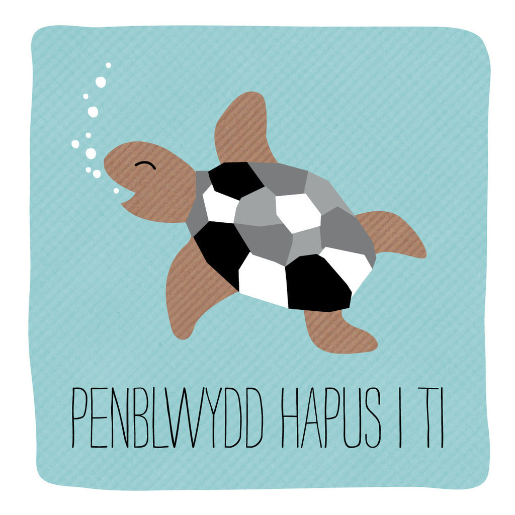 Welsh Turtle Happy Birthday Card/ Penblwydd Hapus I Ti