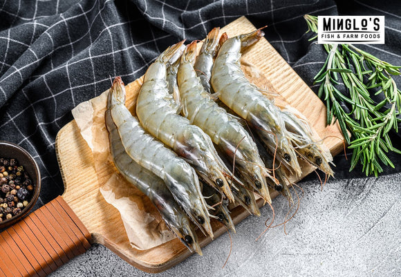 Fresh Jumbo Prawns - Whole with Head (21 to 25 Count 1kg) - MINGLO'S