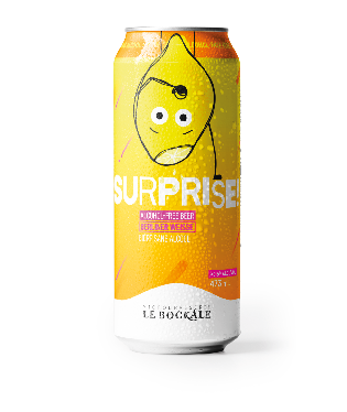 12 X SURPRISE Non-alcoholic Berliner Weisse