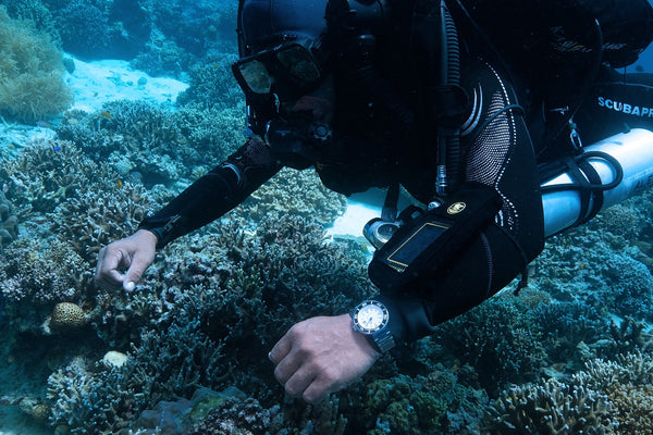 Your Ultimate Guide on Diving Watches