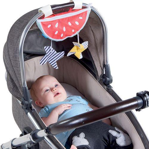 Watermelon Sun Shade 3 in 1