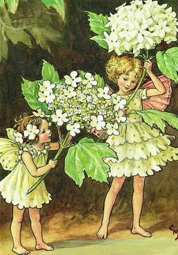 Apple Blossom Fairies Minicard - souzu.co.uk
