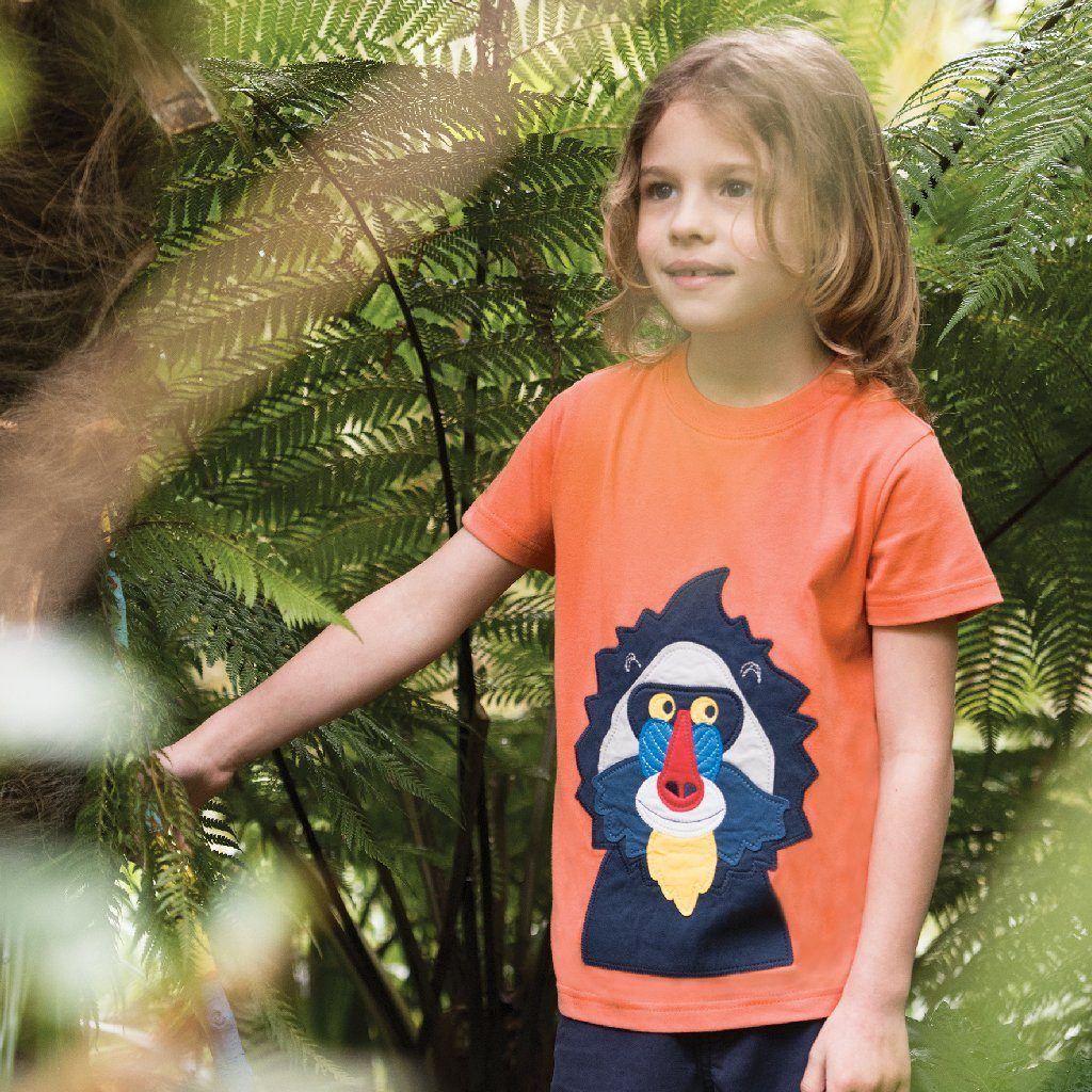 Baboon Applique Top - souzu.co.uk