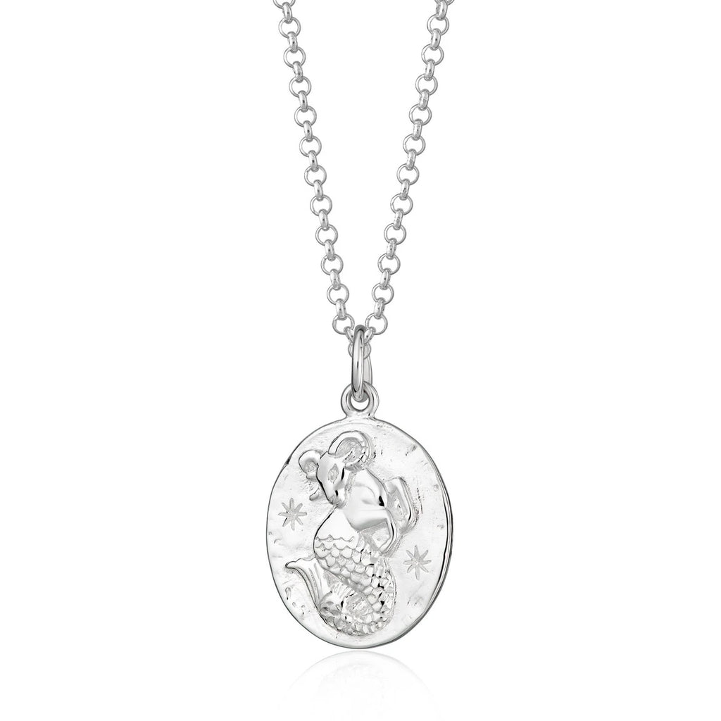 Capricorn zodiac necklace - silver