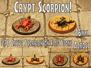 576 Crypt Scorpion on Flag Stone
