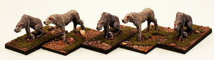 ER28 The Wolf Hounds: 5 Pro-Painted Mythic Miniatures-Ready to Ship