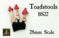 BS22 Toadstools